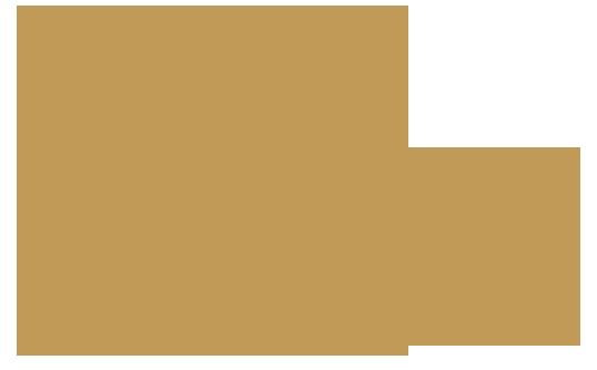 logo Tie-me-Up